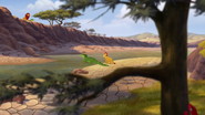 Let-sleeping-crocs-lie (188)