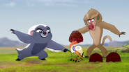 The-traveling-baboon-show (131)