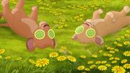 Baboons (269)