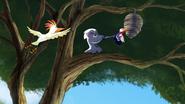 The-lost-gorillas (4)