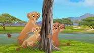 Baboons (402)