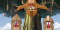 The Traveling Baboon Show (song)