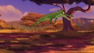 Let-sleeping-crocs-lie (351)