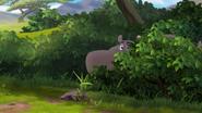 The-imaginary-okapi (40)