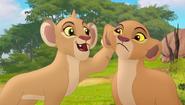 Baboons (168)
