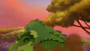 Let-sleeping-crocs-lie (286)
