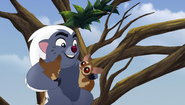 The-trouble-with-galagos (91)
