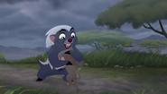 Baboons (40)