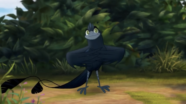 File:The-call-of-the-drongo (144).png