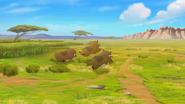 Follow-that-hippo (247)