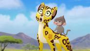 Baboons (142)