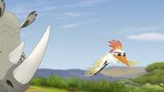 Ono-the-tickbird (304)