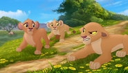 Baboons (304)