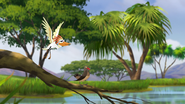 Ono-the-tickbird (328)