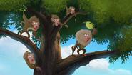 Baboons (145)
