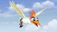 Ono-the-tickbird (288)