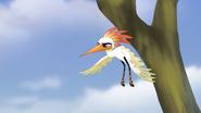 Ono-the-tickbird (75)
