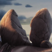 Brokenrock-profile