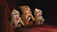 The-traveling-baboon-show (581)