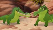 Let-sleeping-crocs-lie (67)