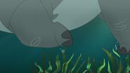 Follow-that-hippo (321)