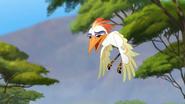 Ono-the-tickbird (174)