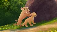 Baboons (292)