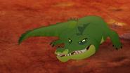 Let-sleeping-crocs-lie (296)