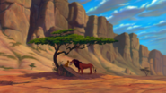 Lion-king-disneyscreencaps.com-3570