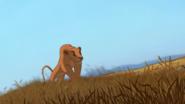 Lion-king-disneyscreencaps.com-6411