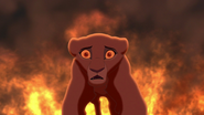 Lion-king2-disneyscreencaps.com-3869