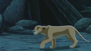 Lion-king2-disneyscreencaps.com-4380