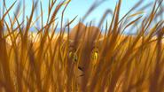 Lion-king-disneyscreencaps.com-6408