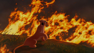 Lion-king2-disneyscreencaps.com-3877