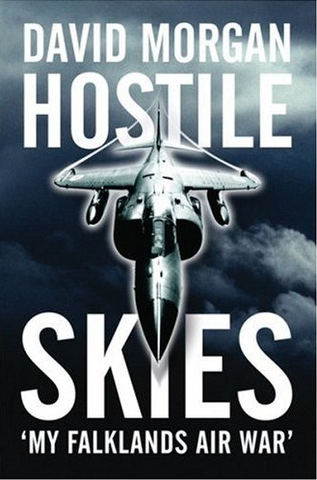 File:Hostile skies.PNG