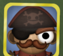Toy Pirate