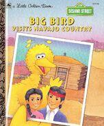 Big bird visits navajo country