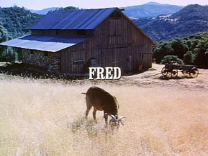 File:Title.fred.jpg