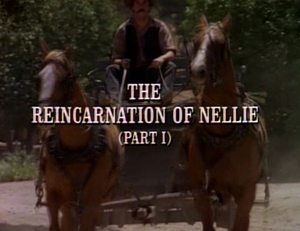 File:Title.reincarnationofnellie1.jpg