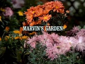 Title.marvinsgarden
