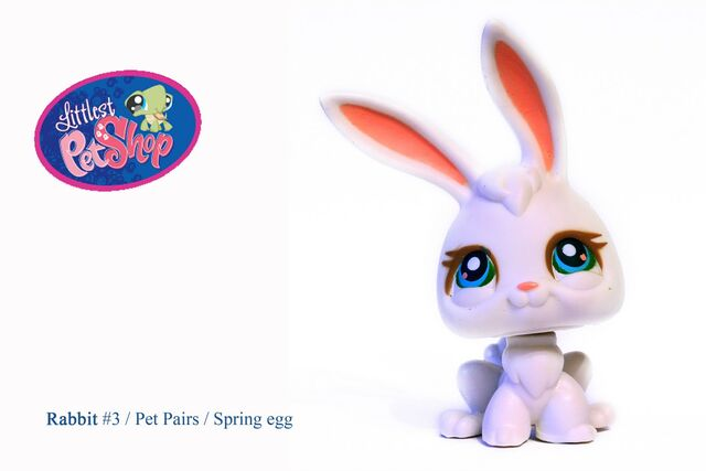 File:Littlest Pet Shop -3.jpg