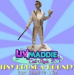 TinyHouse11
