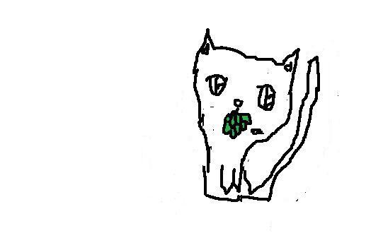 File:Med Cat App, Short-Haired, Male.jpg
