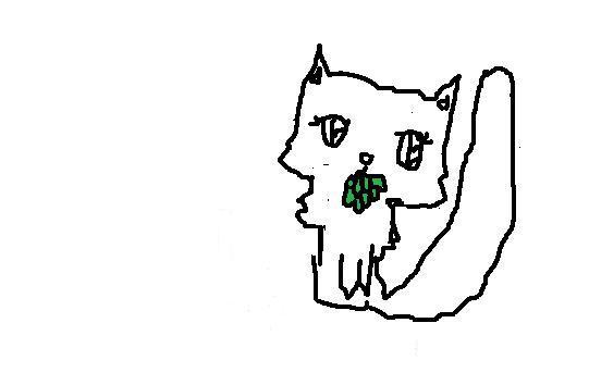 File:Med Cat App, Long-Haired, Female.jpg