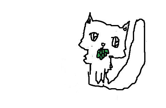 File:Med Cat App, Long-Haired, Male.jpg