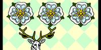 Roses D'Avorio