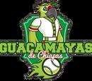 Guacamayas de Palenque
