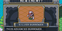 Silver Burrower