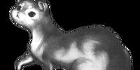 Brier Weasel