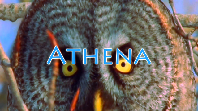 File:Athena Title.png